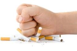 Курение - причина рака бронхов
