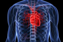 Влияние левосторонней пневмонии на сердце
