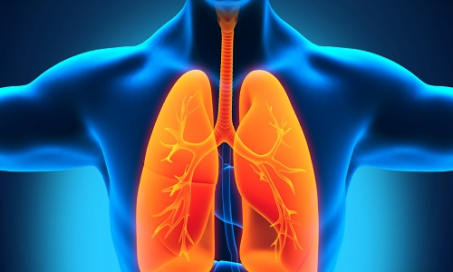 Проблема очагового туберкулеза легких