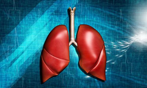 Проблема фиброза легких