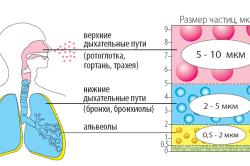 Принцип работы ингалятора при астме